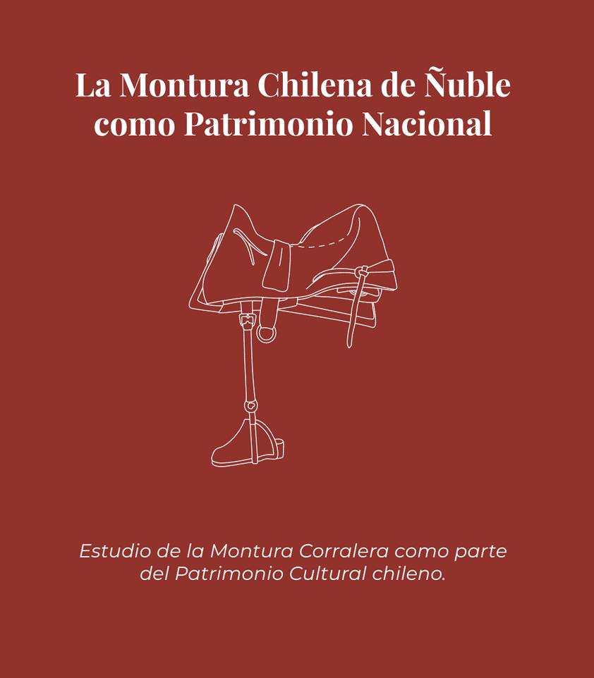 La montura chilena de Ñuble como patrimonio nacional